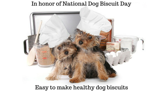 Easy to make dog biscuits for national Dog Biscuit Day