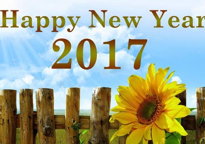 happy-new-year2017-1